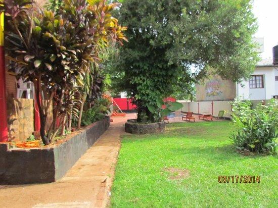 Hostel Park Iguazu: Detras del árbol la pileta