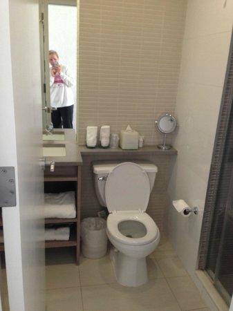 Hotel Indigo: Small bathroom, but very clean.