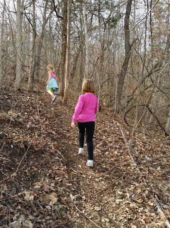 Onondaga Cave State Park: Hiking on the Blue Heron trail