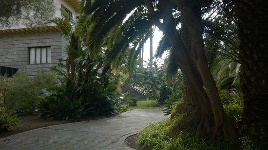 Hotel Escuela Santa Brigida : Jardines
