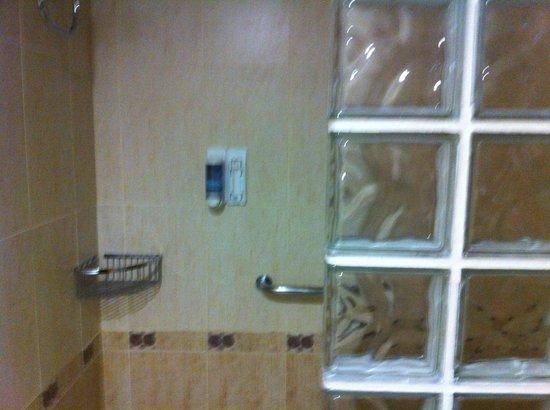 La Era Park Apartments : Shower