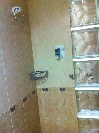 La Era Park Apartments: Shower