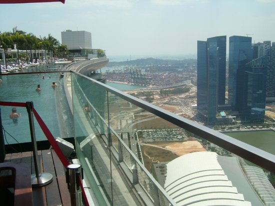Botanic gardens picture of marina bay sands skypark singapore tripadvisor for Marina bay sands swimming pool entrance fee