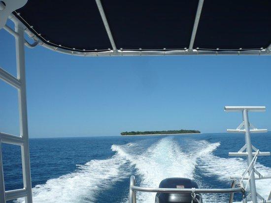 Babou Cote Ocean: îlot vu du bateau