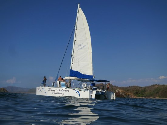 Blue Dolphin Sailing : The sailing vessel