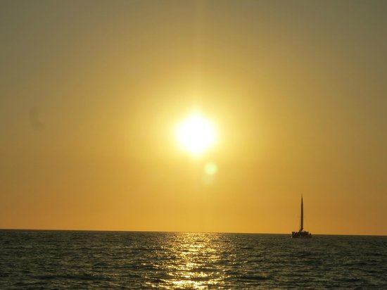 Blue Dolphin Sailing : The coming sunset
