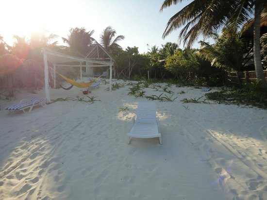 La Chan Cabanita: Beach area of Chan.  hammocks, loungers...