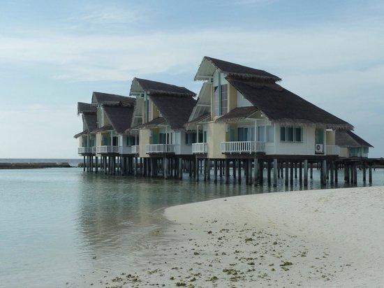 Ellaidhoo Maldives by Cinnamon : Water Villas from beach