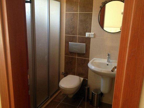 Sapphire Hotel : bathroom