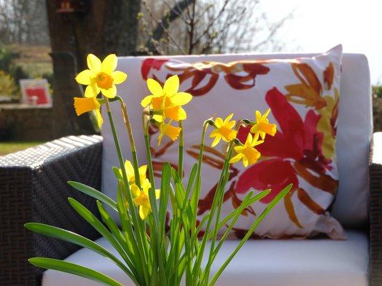 La Haute Grange : Fleurs
