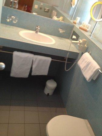 Cornavin Hotel Geneva: Baño amplio