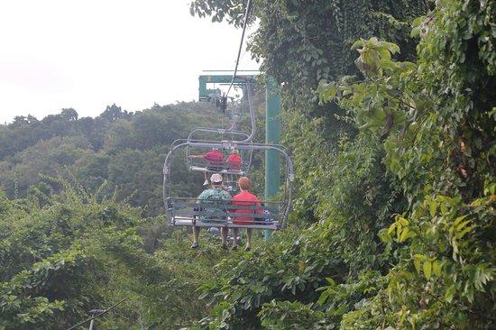 Rainforest Adventures: Sky Explorer Ride