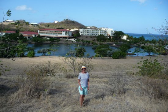 Grenadian by Rex Resorts : Rex Resort, view from the surrounding hills.