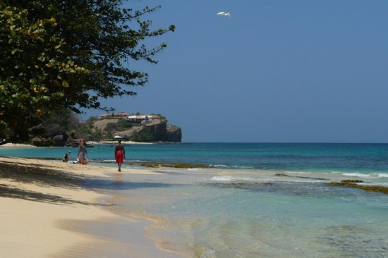 Grenadian by Rex Resorts : Rex Resort beach