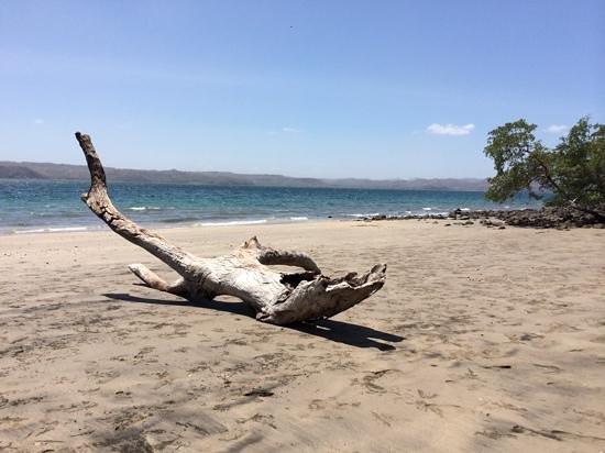 Andaz Costa Rica Resort At Peninsula Papagayo : the beack at Anzar