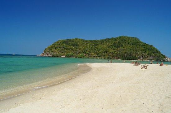 Mae Haad Beach: koh mae