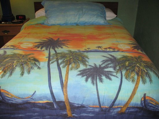 Dixie Belle Motel: our bedspread
