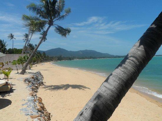 Fair House Villas & Spa: beach