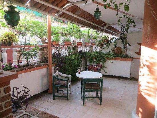 Hotel Italo: Patio entouré de plantes