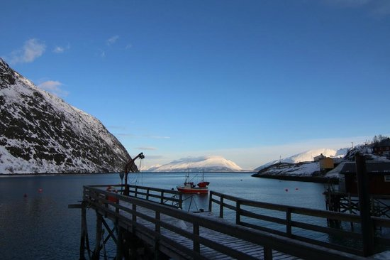 Koppangen Brygger: View of the Fjord from our Cabin