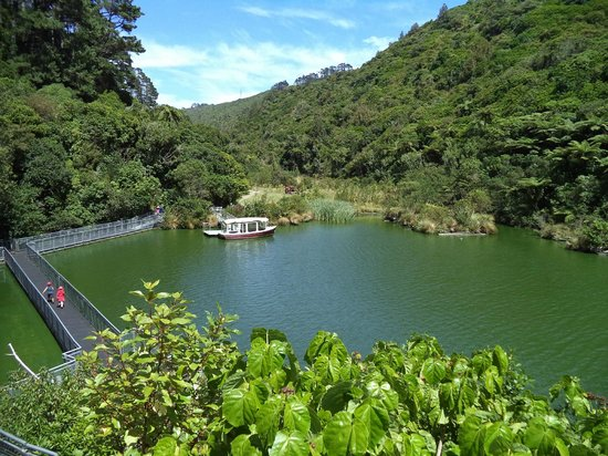 ZEALANDIA Sanctuary: Another lake view