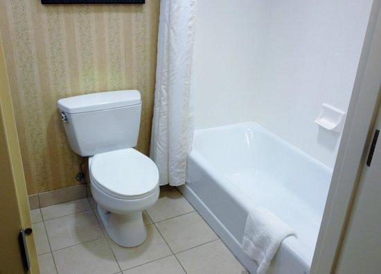 Hilton Garden Inn Memphis Southaven : Bath 2