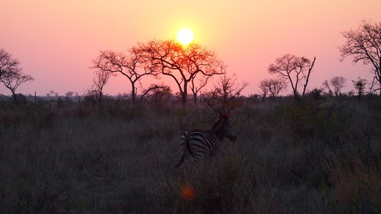 Tydon Safari Camp: sunset