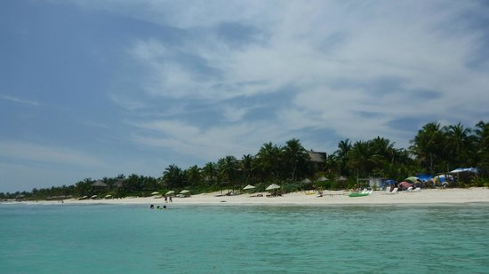 Playa Selva : beach