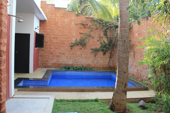 The Windflower Resort & Spa, Mysore: Our beautiful private pool.