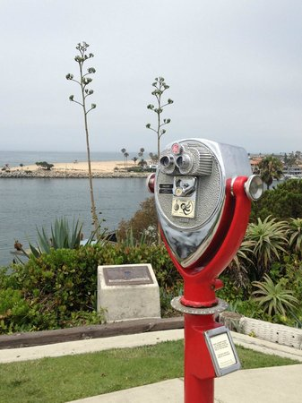 C Kerrs Tours: Finding the perfect views in and around Newport Beach, CA
