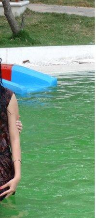 Leonia Holistic Destination : Kids area swimming pool