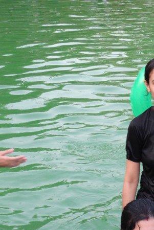 Leonia Holistic Destination : Adult swimming pool