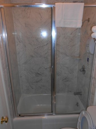 Americas Best Value Inn & Suites-SOMA: Bathroom shower