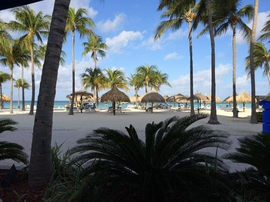 Aruba Marriott Resort & Stellaris Casino: Our view at breakfast