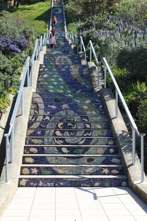 Small Car Big Time Tours : Tiled steps