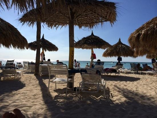 Aruba Marriott Resort & Stellaris Casino: Chairs in the shade