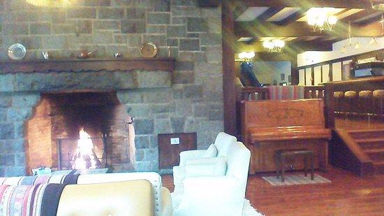 Hosteria Futalaufquen: sala con hogar a leña