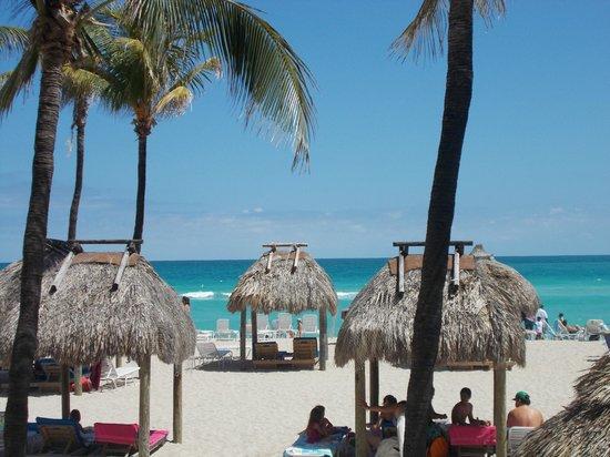 Newport Beachside Hotel and Resort: Playa, palapas