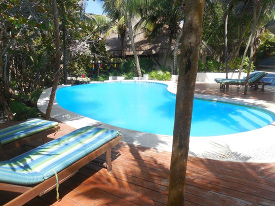 Las Ranitas Eco-boutique Hotel : Piscine