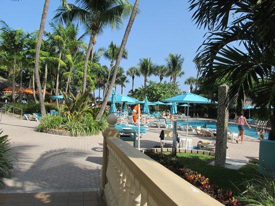 Hotel Riu Plaza Miami Beach: Piscina