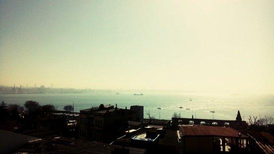 Metropolis Hostel: Rooftop View