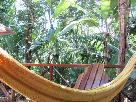Pachamama Jungle River Lodge: View from the room!