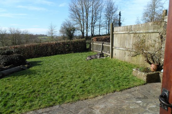 Kings Nympton, UK: linney garden in the sun