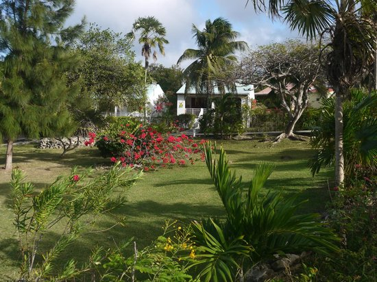 Village de Menard : Le jardin