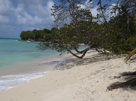 Village de Menard : Les plages