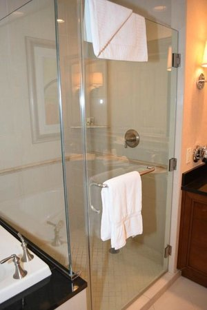 Signature at MGM Grand: Full size shower
