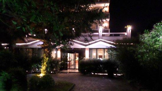 Pinewood Hotel : ingresso