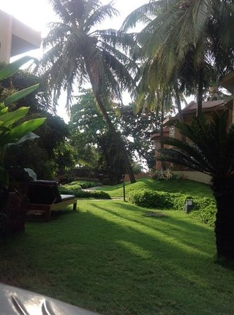 Whispering Palms Beach Resort: our rear garden view