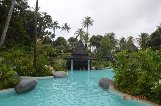 Marina Phuket Resort : Бассейн, бар в бассейне