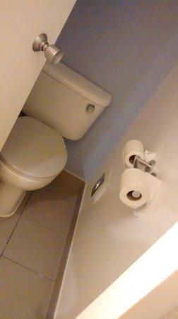 Novotel London Waterloo: Toilet